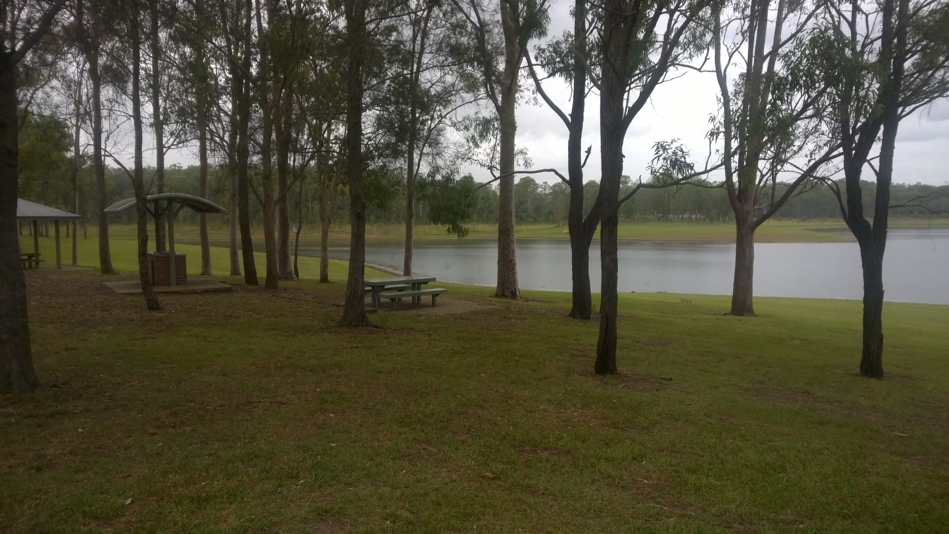 Picnic table and BBQ at Bullocky Rest, a day use area on Lake Samsonvale with plenty of space, lots of BBQs and sheltered tables