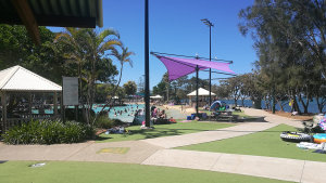 Paths and artificial grass, at Settlement Cove Lagoon in Redcliffe