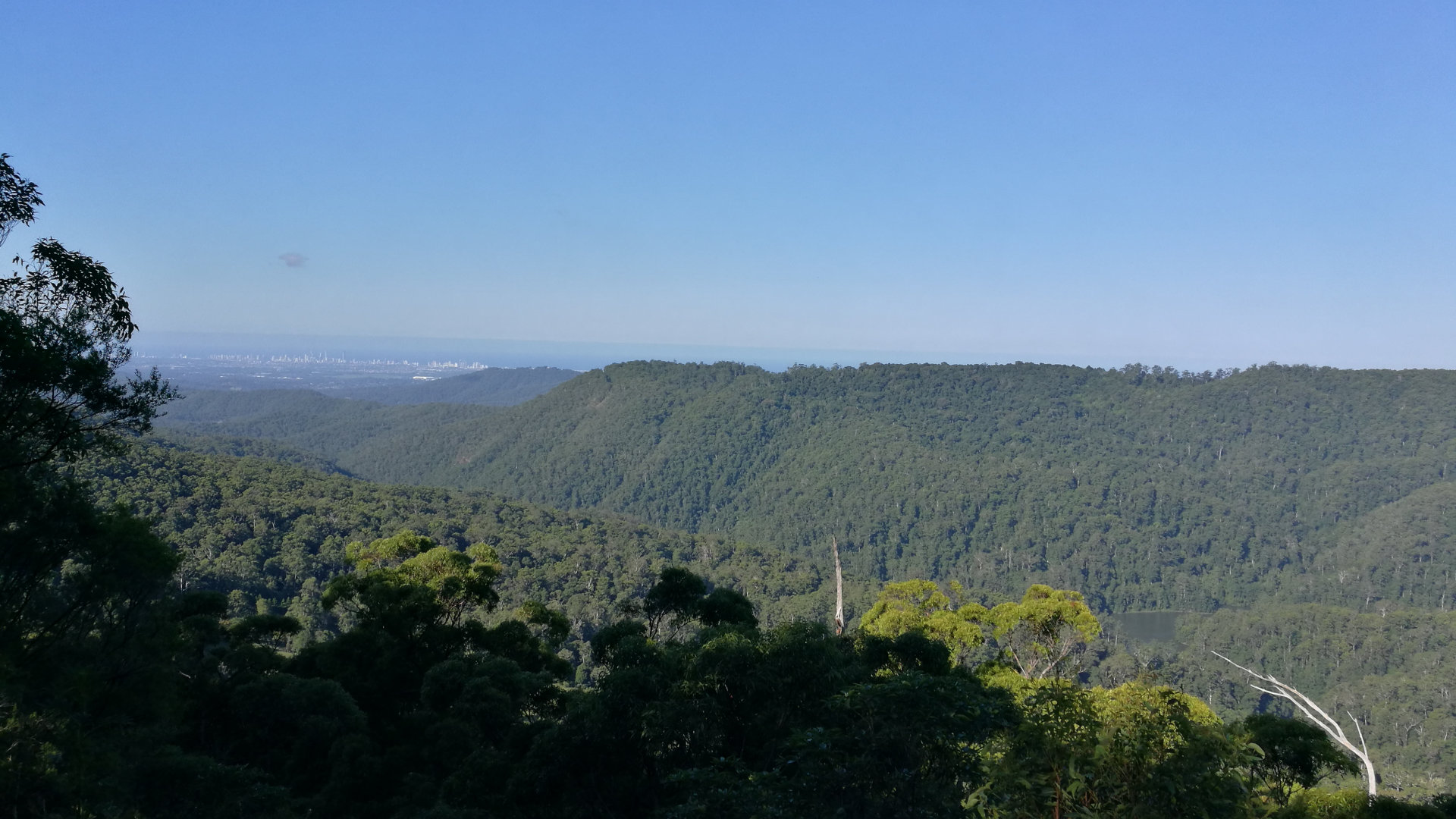 View from Wunburra Lookout down the valley and Gold Coast buildings on the coast in the distance. Wunburra Lookout is the first lookout entering into the Springbrook Mountain area