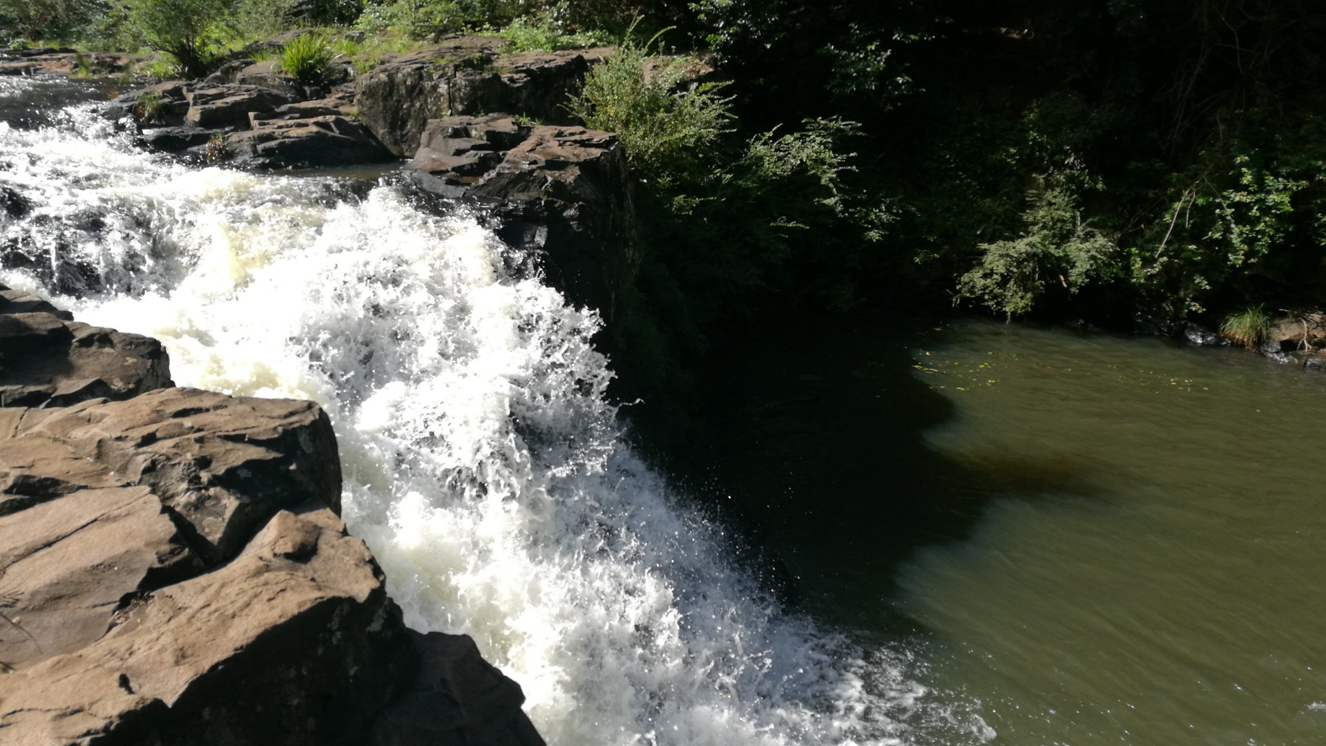 Waterfall at Gardners Falls, a popular spot near Maleny along the Obi Obi Creek. The easy walk leads to a swimming hole, with swinging ropes and rock ledges to jump in for the adventurous, and shallower water above the falls for younger children