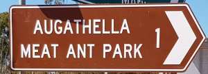 Brown sign for Augathella Meat Ant Park