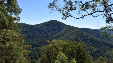 View from the Booloumba Creek View in Conondale National Park
