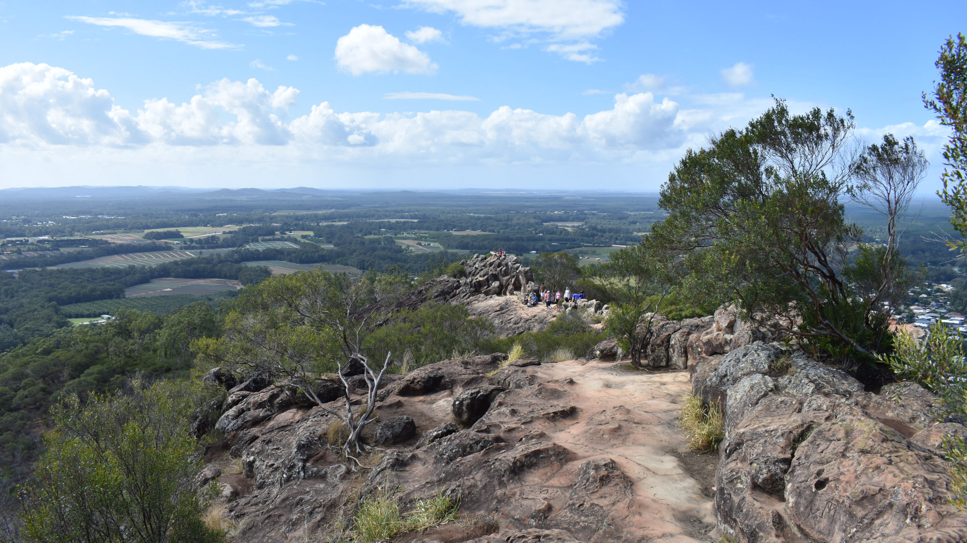 View from the summit of Mount Ngungun looking along the ridge at the top. One of the smaller of the Glass House peaks at 253m, it is one of the more accessible peaks to climb to the summit, with stunning views of Mt Tibrogargan, Mt Coonowrin, and Mt Beerwah