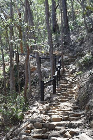 Mt Ngungun Summit Walk with updated railings and steps