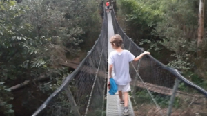 Suspension foot bridge with a boy walking across, at Peach Trees camping grounds