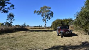 Open grass area at the reserve, Jeep parked on the grass