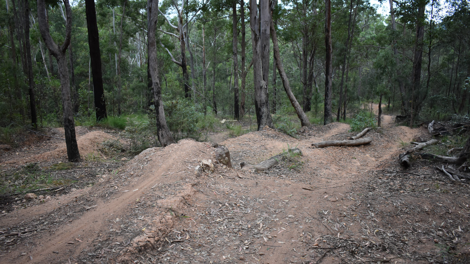 Hennessey Mountain Bike Track, an IMBA black diamond rated downhill track in the Glass House Mountains area, west of the Beerburrum township