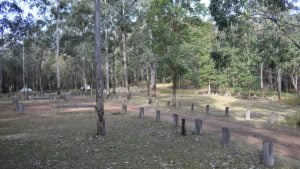 Spicers Gap camping area
