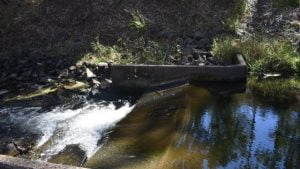 Small weir at the Bunyip Hole near Mulgildie