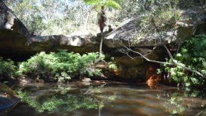 Water pool with rock ledge above, at the Fern Tree Pool Circuit walk at Cania Gorge