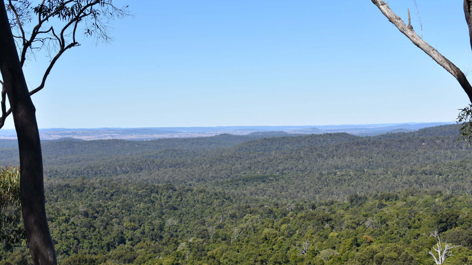 View from Hurdle Gully Lookout in Coominglah State Forest