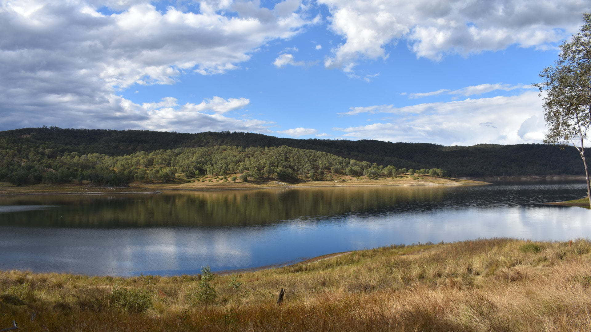 View over Lake Cressbrook, from the walk along the shores of the dam. Lake Cressbrook is a water supply dam for Toowoomba, with camping and day use areas. Boating, canoeing, and fishing are permitted