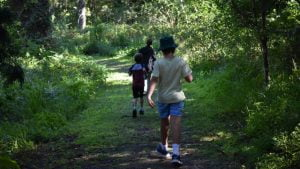 Three boys walking on a trail through bushland, on the Martin Williams Nature Walk at Baroon Pocket Dam