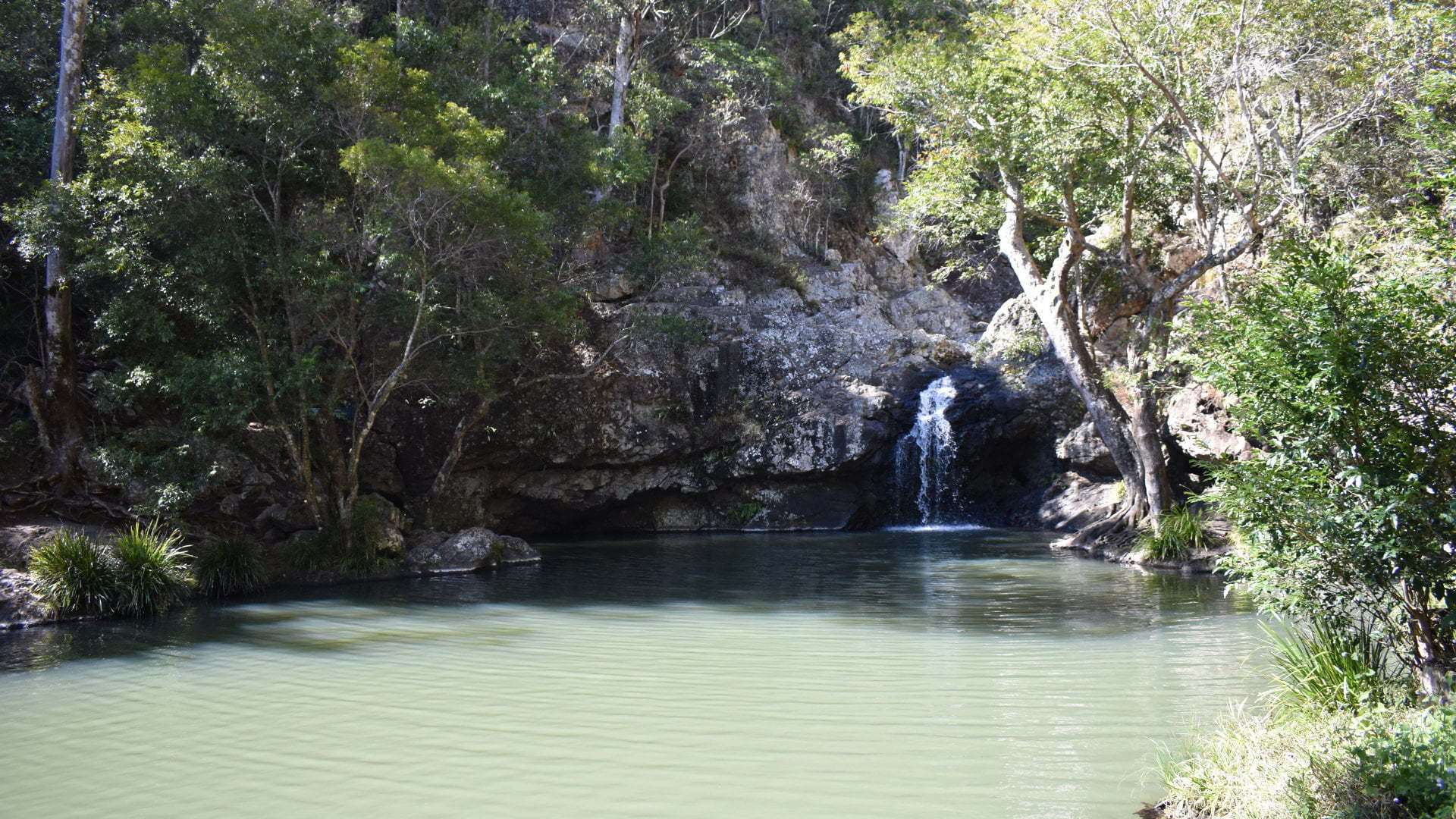 Large rockpool with a small waterfall in the background, at the Kondalilla Falls National Park
