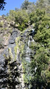 Looking across to a waterfall, from the lookout on the way down to the base of the Kondalilla Falls