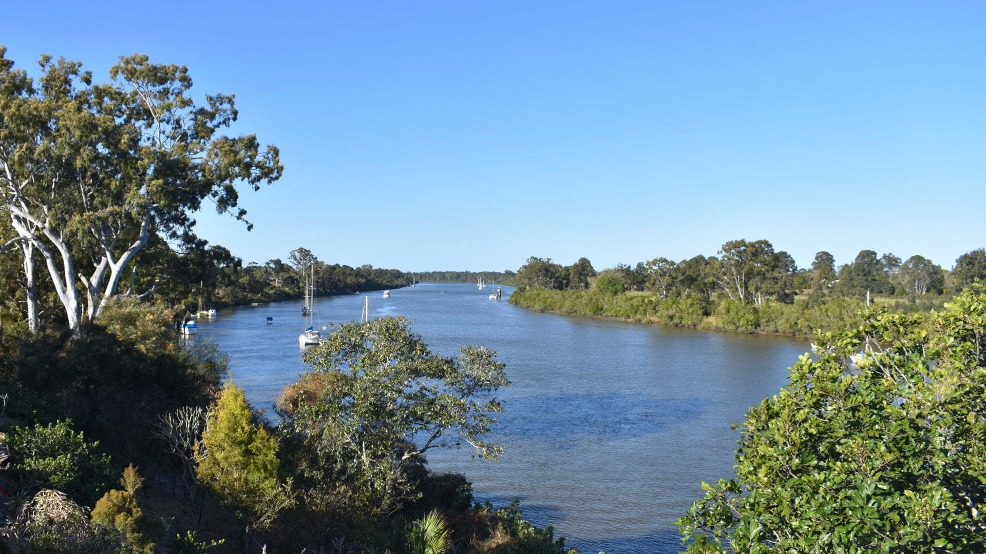 View up the Mary River from Point Lookout (Pt Lookout) in Maryborough