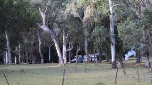 Griffith Creek camping area at Kroombit Tops National Park