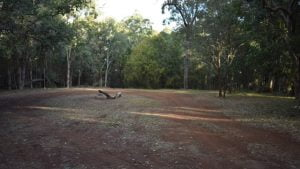 Razorback Camping Area at Kroombit Tops National Park