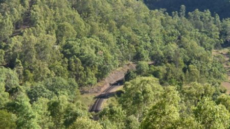 Section of railway line, seen from the Border Loop Lookout in the Border Ranges National Park