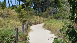 Sandy track at Buckley's Hole Conservation Park leading from the picnic area to the beach