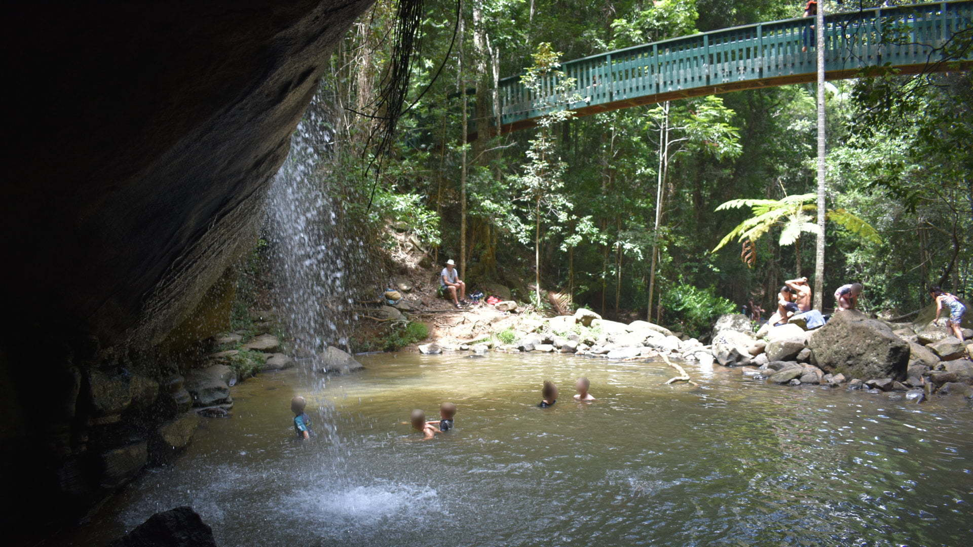 Waterfall flowing into a waterhole with an arch foot bridge and rainforest in the background, taken at Serenity Falls in Buderim Forest Park