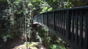 Arch bridge across a gully, at Serenity Falls in the Buderim Forest Park