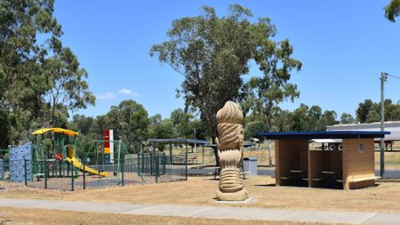 Playground and sheltered picnic tables with an art piece in front of it, at the park for the Condamine River in Warwick
