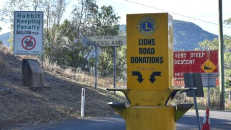 QLD and NSW border on Lions Road at the top of Border Ranges National Park
