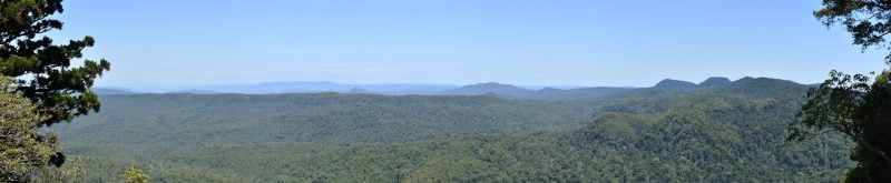 Panoramic view from Murray Scrub Lookout at Toonumbar National Park