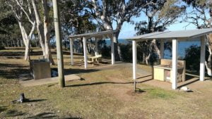 Picnic tables and BBQs in a park, at Scotts Point Progress Park in Redcliffe