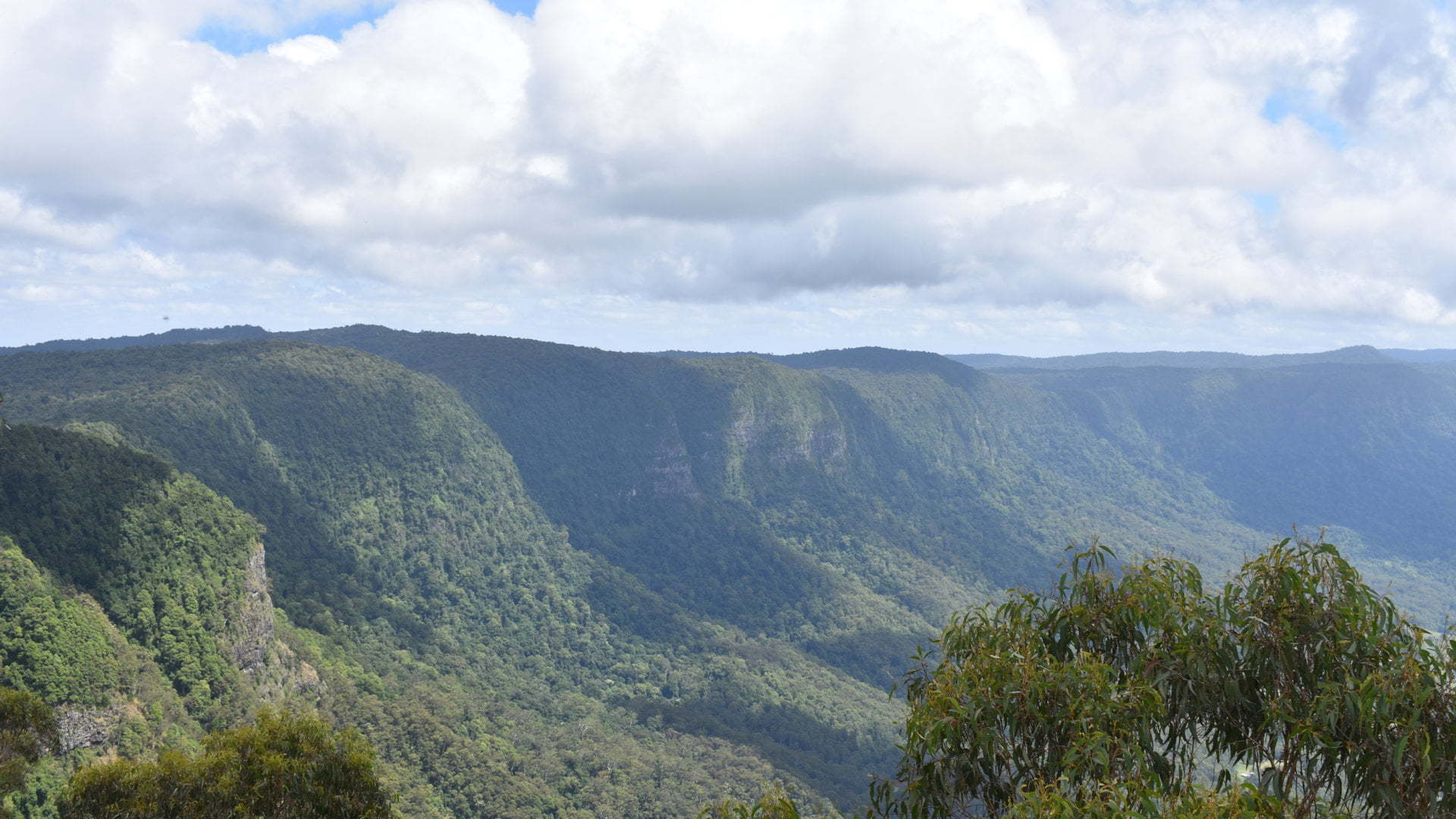 Caldera of the ancient Tweed Volcano, taken from The Pinnacle at the Border Ranges National Park