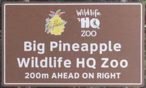 Brown sign for Big Pineapple and Wildlife HQ Zoo, 200m ahead on right