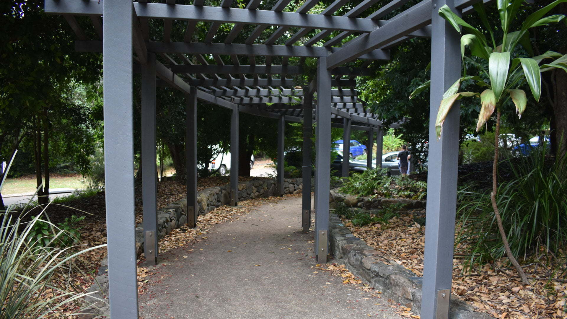 Pergola walkway with low stone wall edges, at the Edna Walling Memorial Garden in Buderim