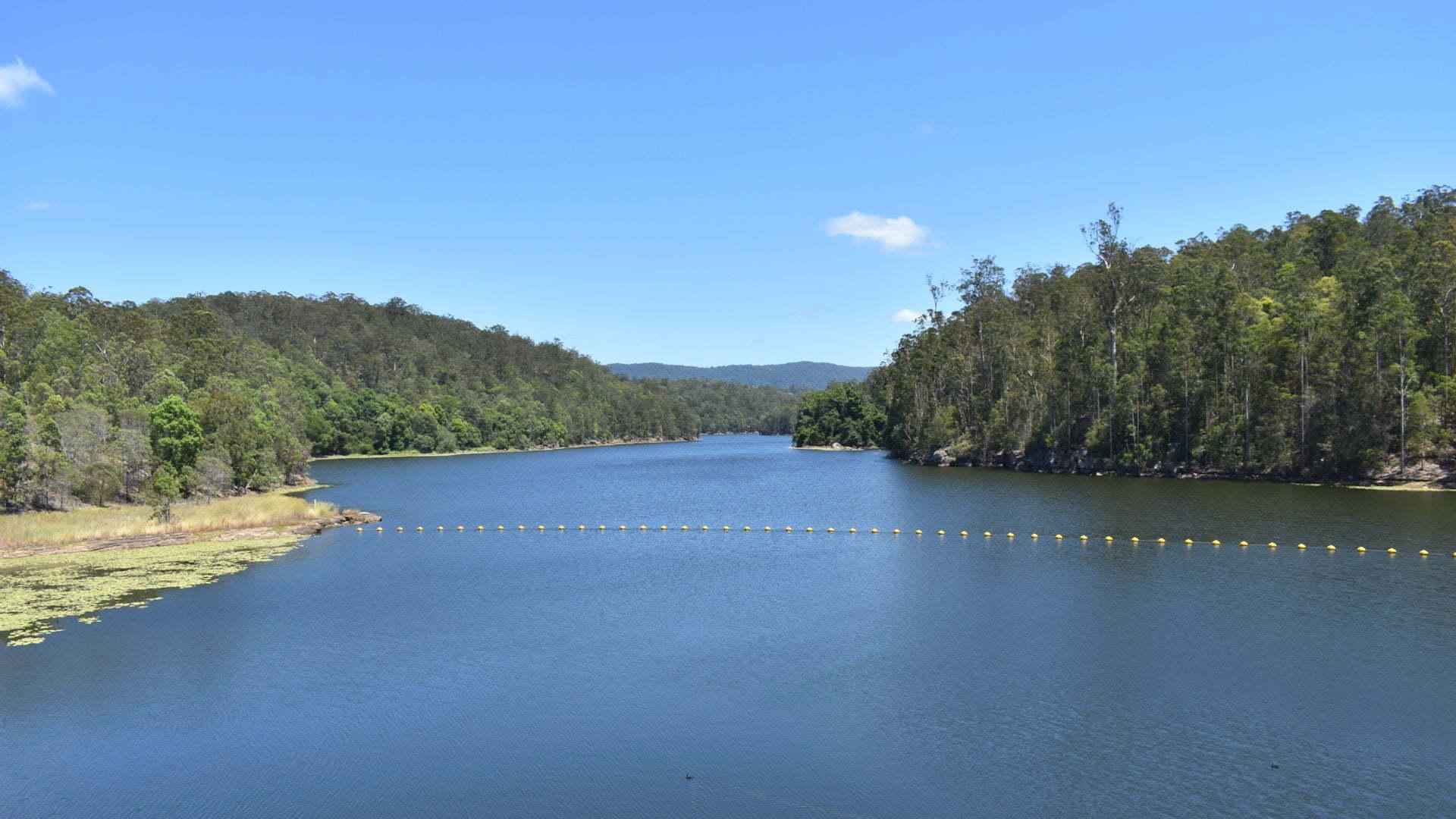 View of Toonumbar Dam water, taken from the Toonumbar Dam Wall