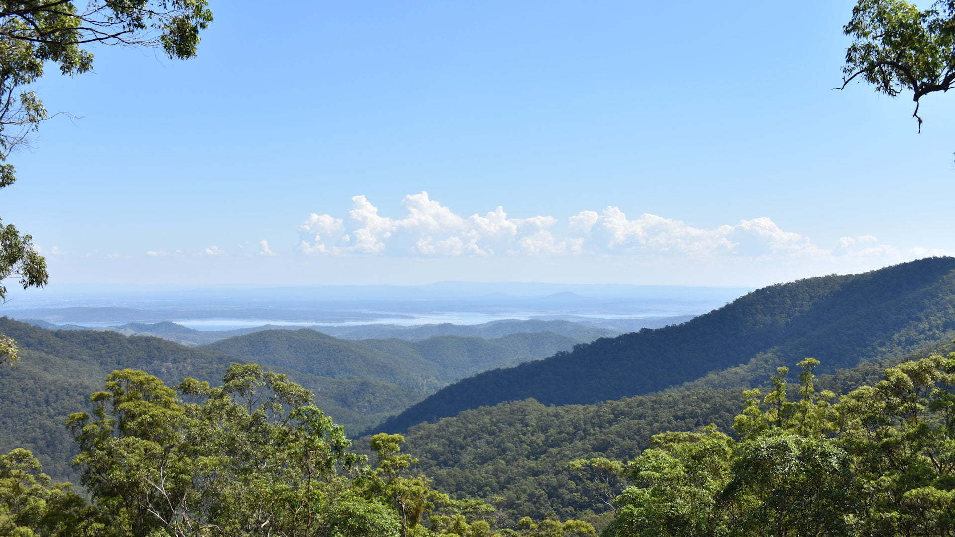 Rolling hills with Lake Wivenhoe in the background, seen from Wivenhoe Outlook on Mount Glorious Road