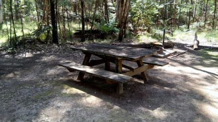 Shaded picnic table, fire place with swing away BBQ behind it, at the Boundary Falls Campgrounds in Gibraltar National Park