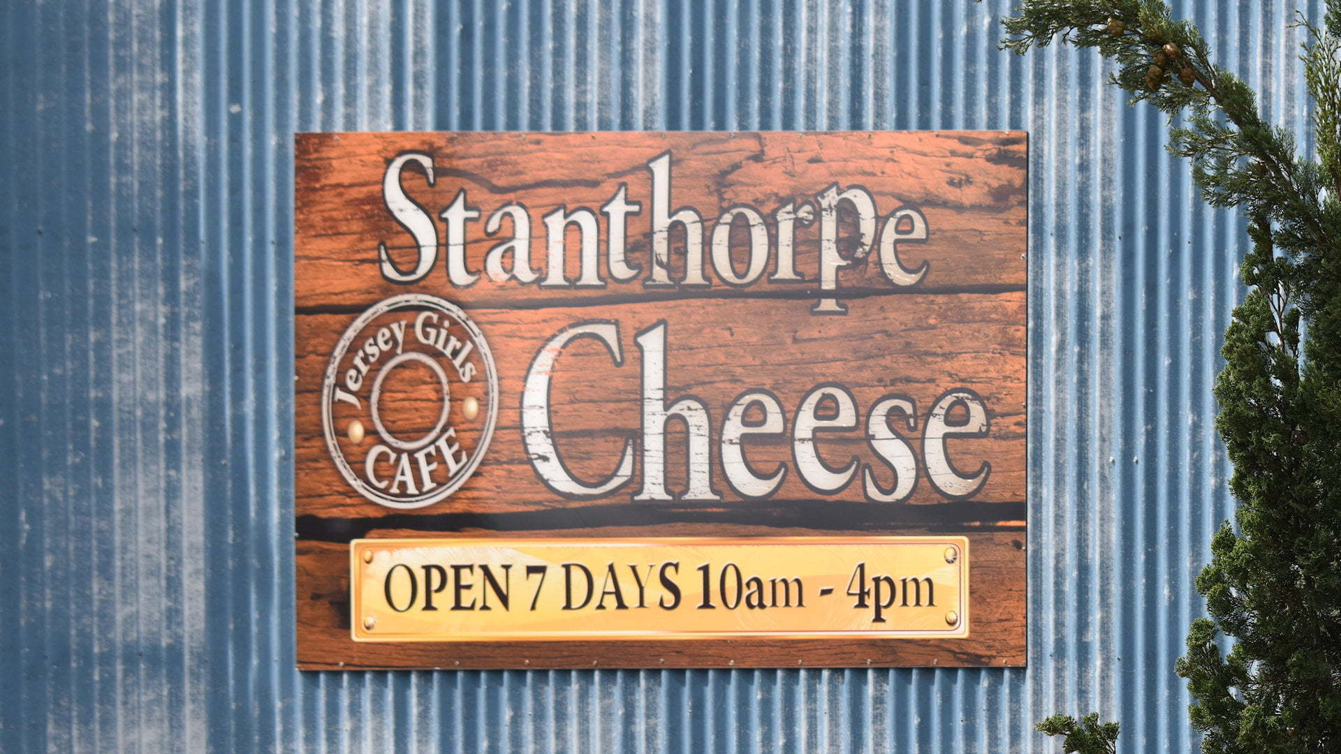 Sign for Stanthorpe Cheese, open 7 days 10am-4pm, Jersey Girls Cafe, on a blue corrugated iron background
