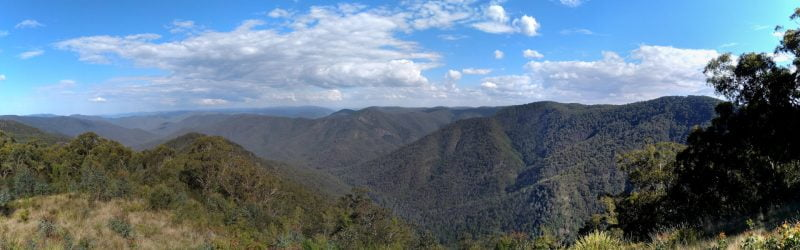 Panorama view from Raspberry Lookout in Gibraltar Ranges National Park