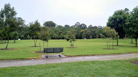 Green space at Rocks Riverside Park