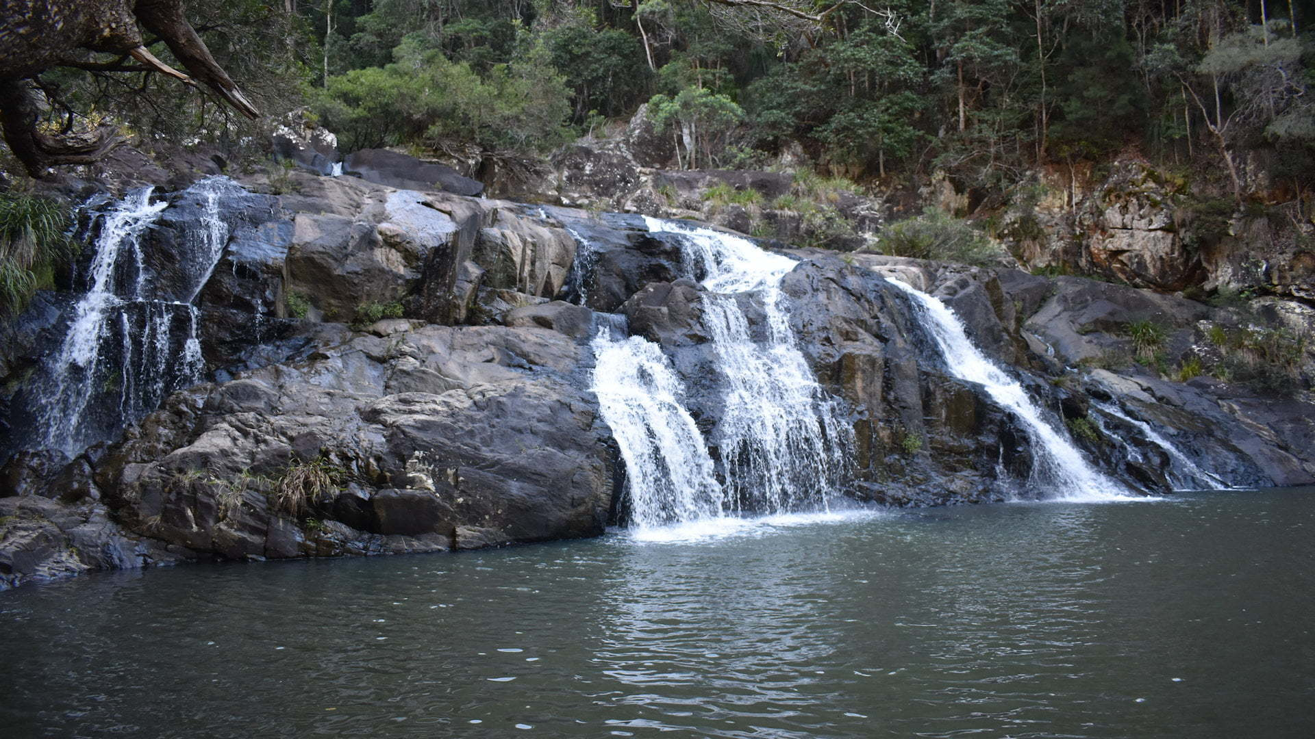 Set of small waterfalls flowing into a large waterhole, taken at at Booloumba Creek Falls