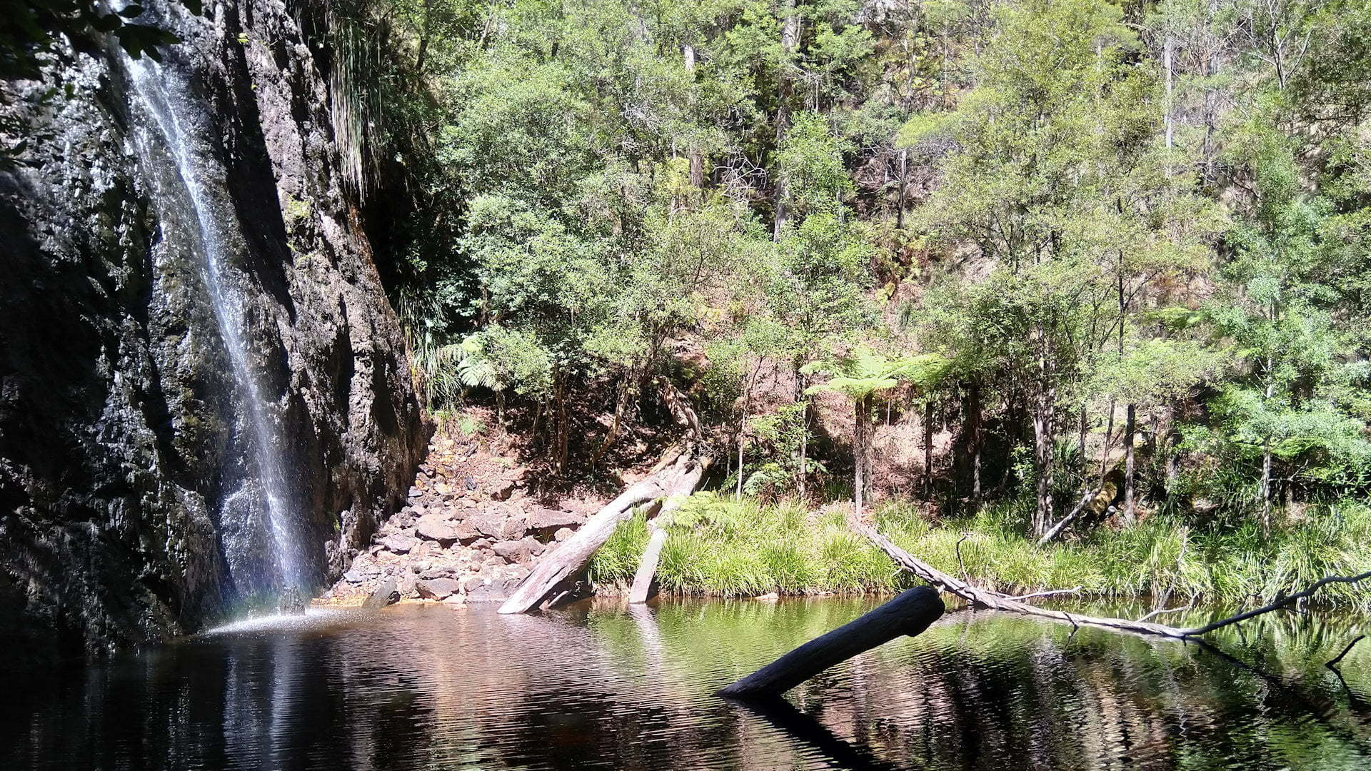Boundary Falls and waterhole in Gibraltar Range National Park