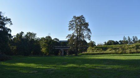 Grass area at Edward Allison Park