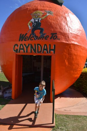 Welcome to Gayndah, the Big Orange