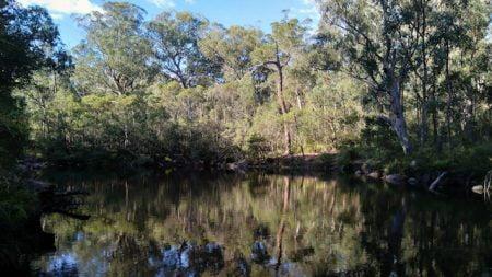 Calm water creek, Dandahra Creek at Mulligans Hut