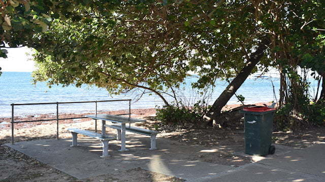 Picnic table shaded under a tree, rubbish bin beside it and beach in the background, taken at Queens Beach South on the Redcliffe Peninsula