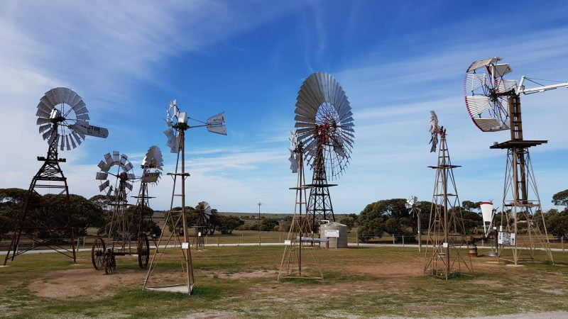 Collection of windmills at the Windmill Museum in Penong South Australia, including the Big Windmill, Australia's biggest windmill and one of the big things