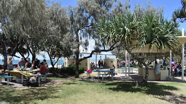Grass area beside the ocean, shady trees over picnic tables, sheltered BBQs