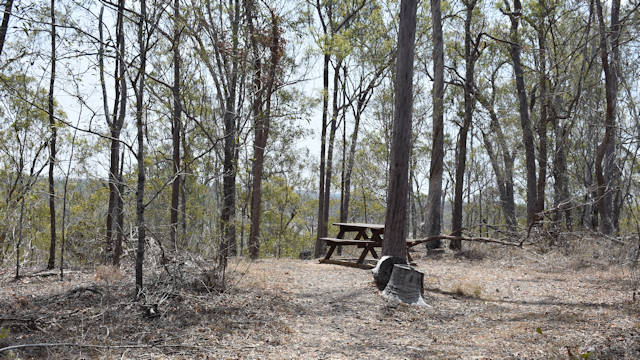 Lookout blocked by trees, picnic table, dry bushland