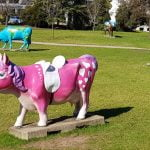 Pink Pony Cow, part of Shepparton's Moooving Art attraction