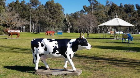 Jersey Cow, part of Shepparton's Moooving Art attraction
